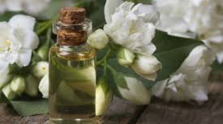 Aromatherapy The Queen of Alternative Therapies